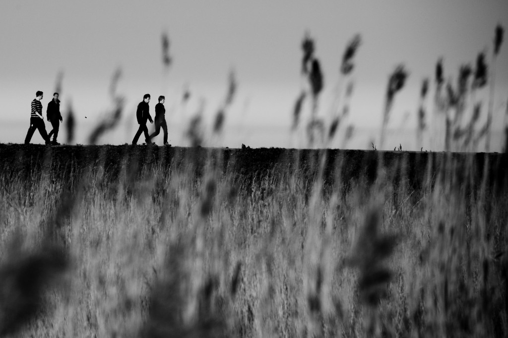20160325_4234_on_the_dyke